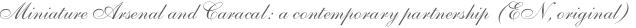 Miniature Arsenal and Caracal: a contemporary partnership (EN, original)